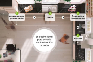 ¿Cómo debemos de diseñar nuestra cocina para no contaminar nuestros alimentos?