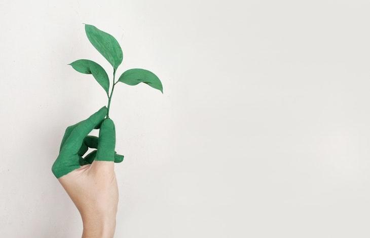 reflexión de-medioambiente